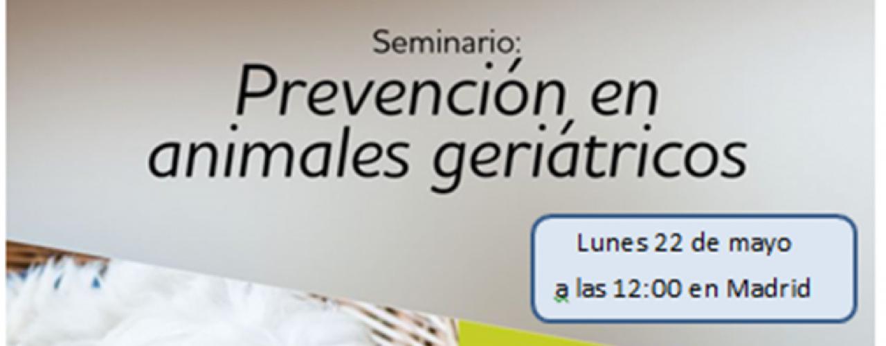 Seminario: Prevención en animales geriátricos (Madrid)