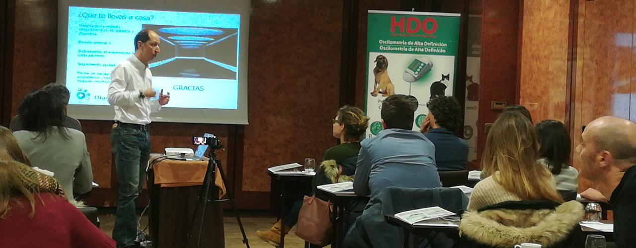 Hifarmax proporciona formación en Cardiología a su red de veterinarios en Madrid