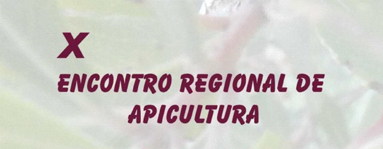 X Encontro Regional de Apicultura - Patacão