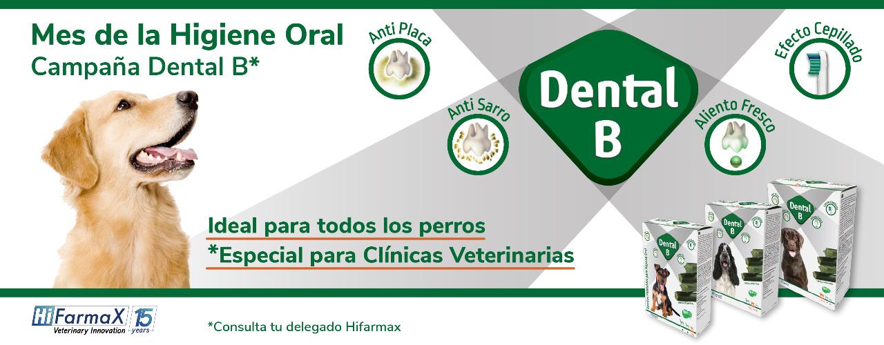 Mes de la Higiene Oral con Dental B