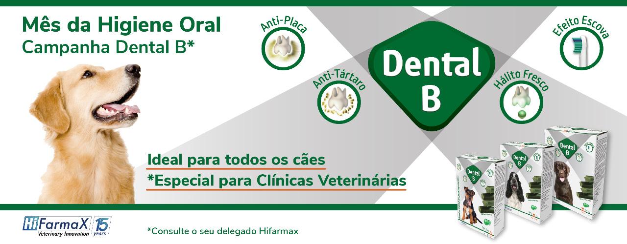 Mês da Higiene Oral com Dental B